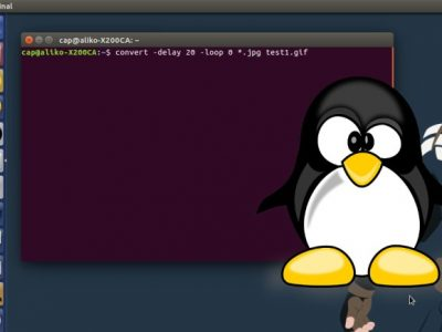 How to Convert JPG Images to an Animated GIF in Linux With Command Line