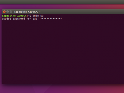 How to Make Your Sudo Password Visible in Ubuntu