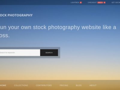 5 Best WordPress Themes for Stock Photo Website