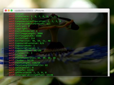 How to View EXIF data of a Photo from Terminal in Linux