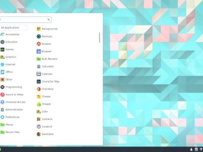 How to Install and Run Cinnamon Desktop in Ubuntu