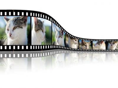 7 Best Video Players for Linux