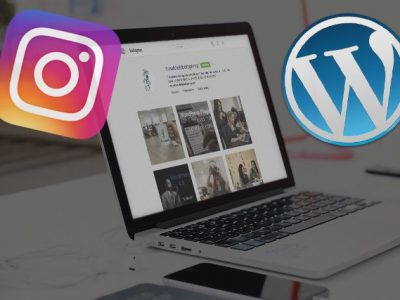 How To Add Instagram Gallery to WordPress
