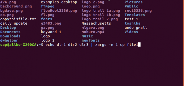 How To Copy A File To Multiple Directories In Linux With A Single