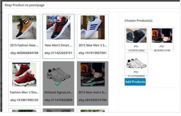 6 Great WordPress Plugins for eBay Affiliates - Better ...