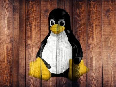 6 Best Screen Recorders for Linux