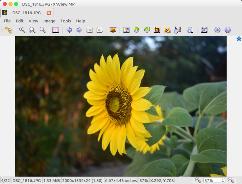 7 Best Linux Image Viewers for Photographers – Better Tech Tips