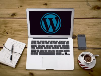 7 Recommended WordPress Advertising Plugins for Professional Bloggers