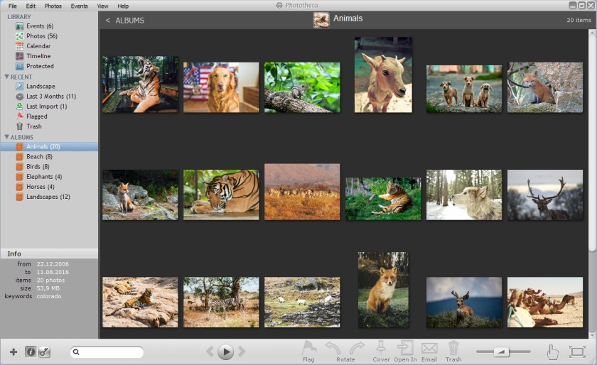 7 Best Photo Management Software for Windows