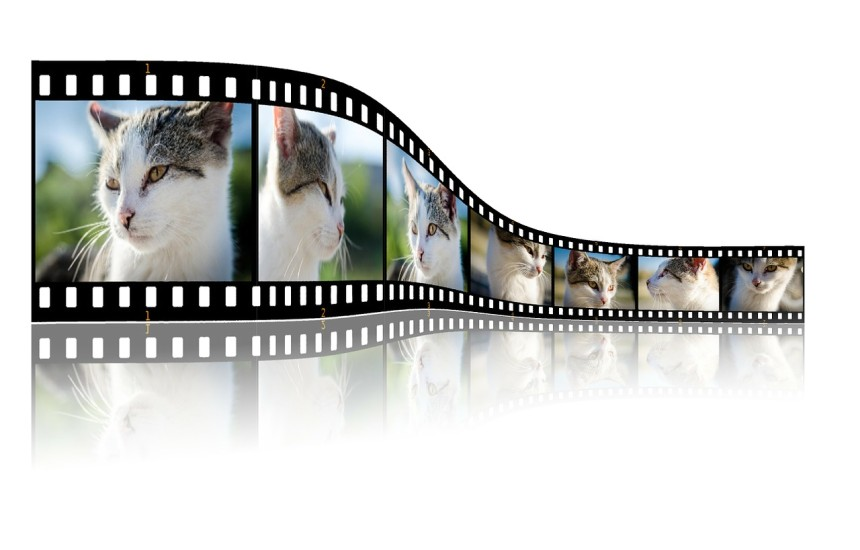7 Best Video Players for Linux – Better Tech Tips