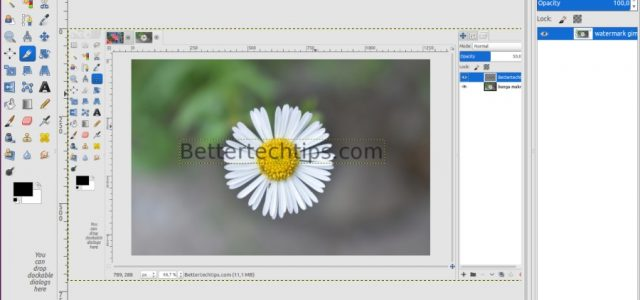 How to Create Watermark in GIMP