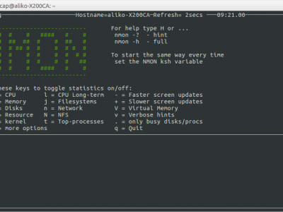 How to Use Nmon Command in Linux