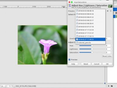 How to Work with Presets in GIMP