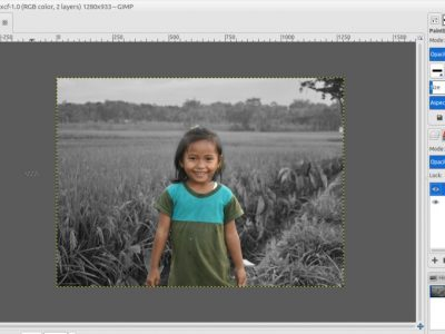GIMP Tutorial: How to Use Layer Mask to Colorize Selected Area of an Image
