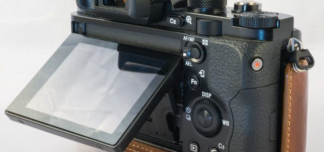 10 Best Touch Screen Mirrorless Cameras Based on DxOMark Scores