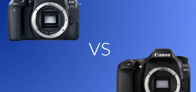 Canon 77D vs Canon 80D: Which One You Should Buy?