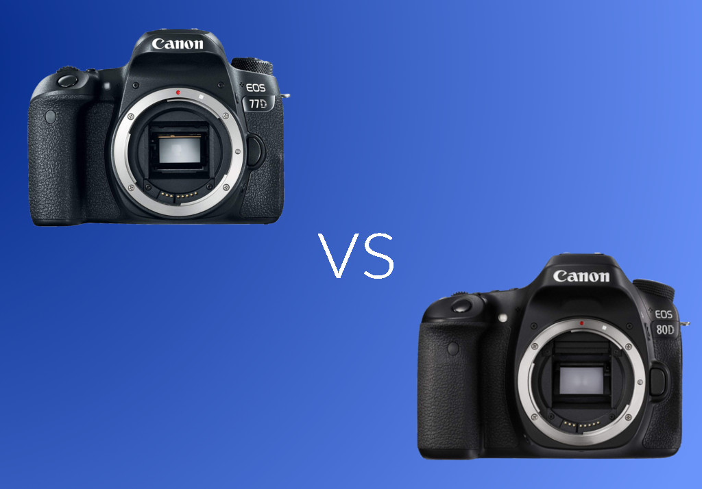 Canon 77D vs Canon 80D: Which One You Should Buy? – Better Tech Tips
