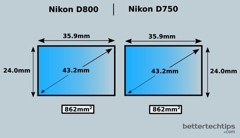Nikon D800 vs Nikon D750: Which Full Frame DSLR is Better