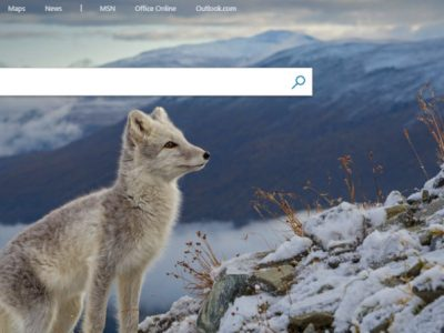 9 Advanced Search Operators You Can Use on Bing